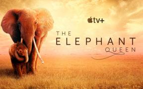 Bild: Apple TV+